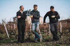 On field tutoring | Château Haut-Bailly | Pessac | Bordeaux
