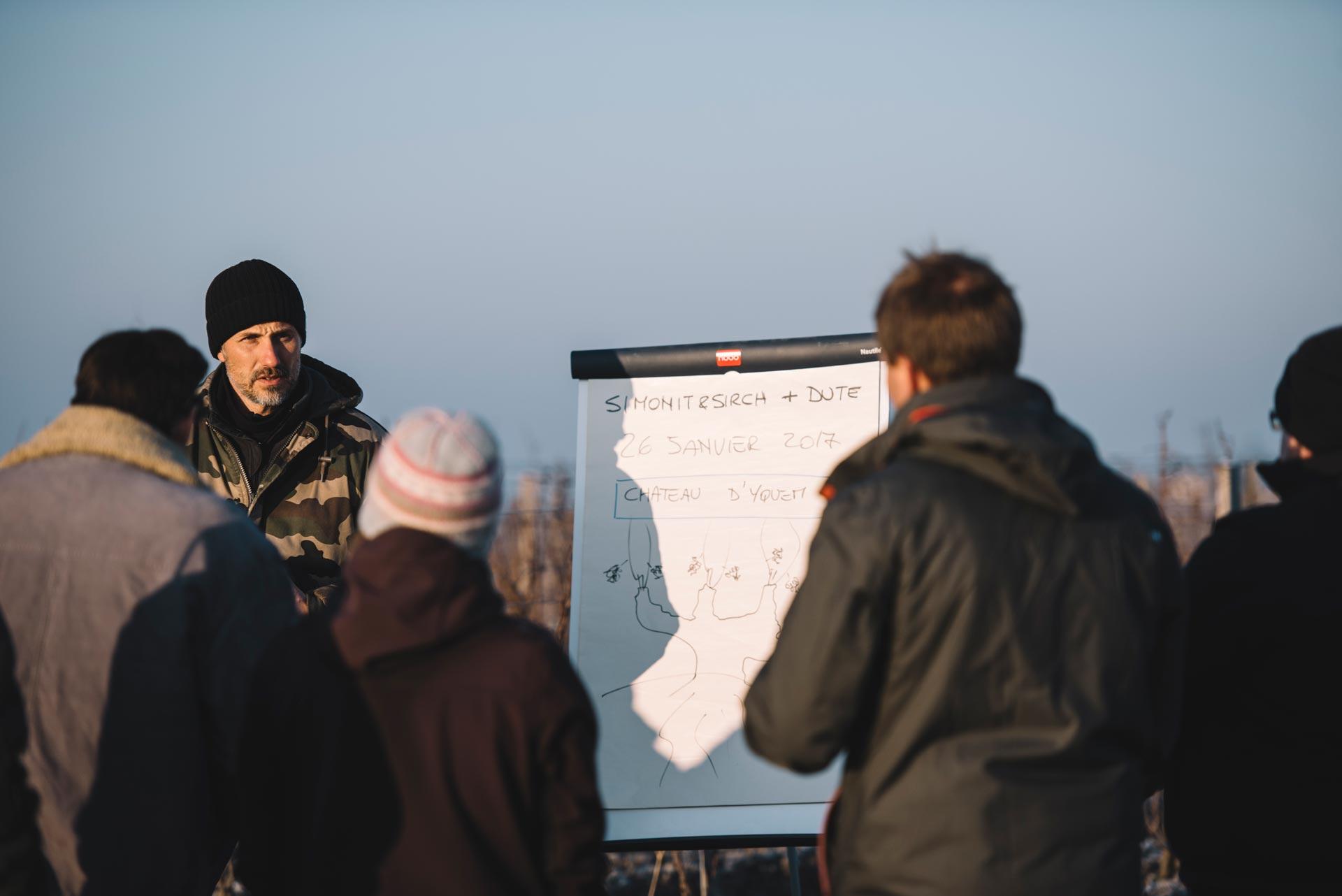 Winter training | Château d'Yquem | Sauternes | Bordeaux
