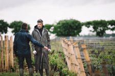 Tutoraggio in vigna | Domaine Leroy | Vosne-Romanée | Bourgogne
