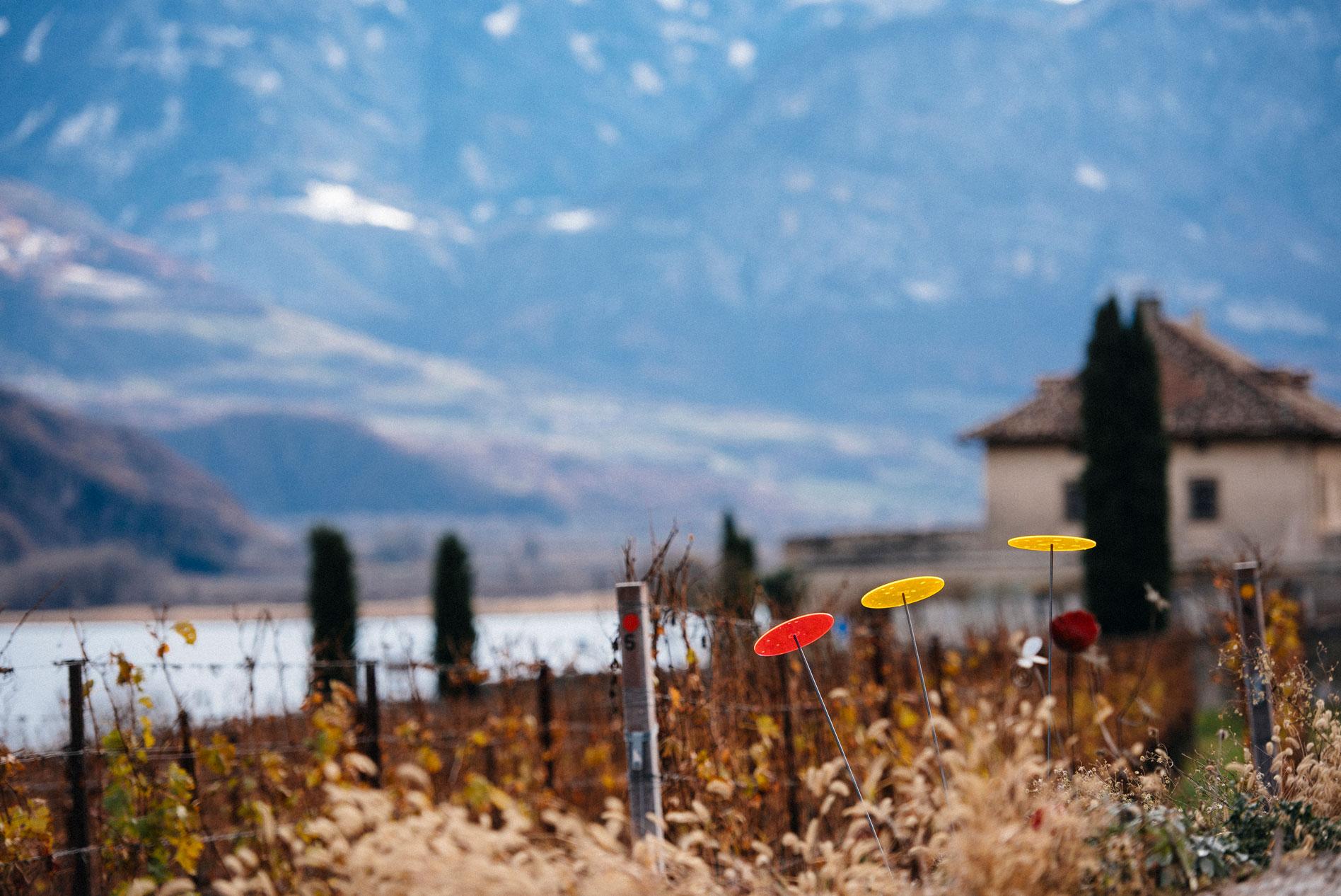 Manincor   Caldaro   Alto Adige   Italy