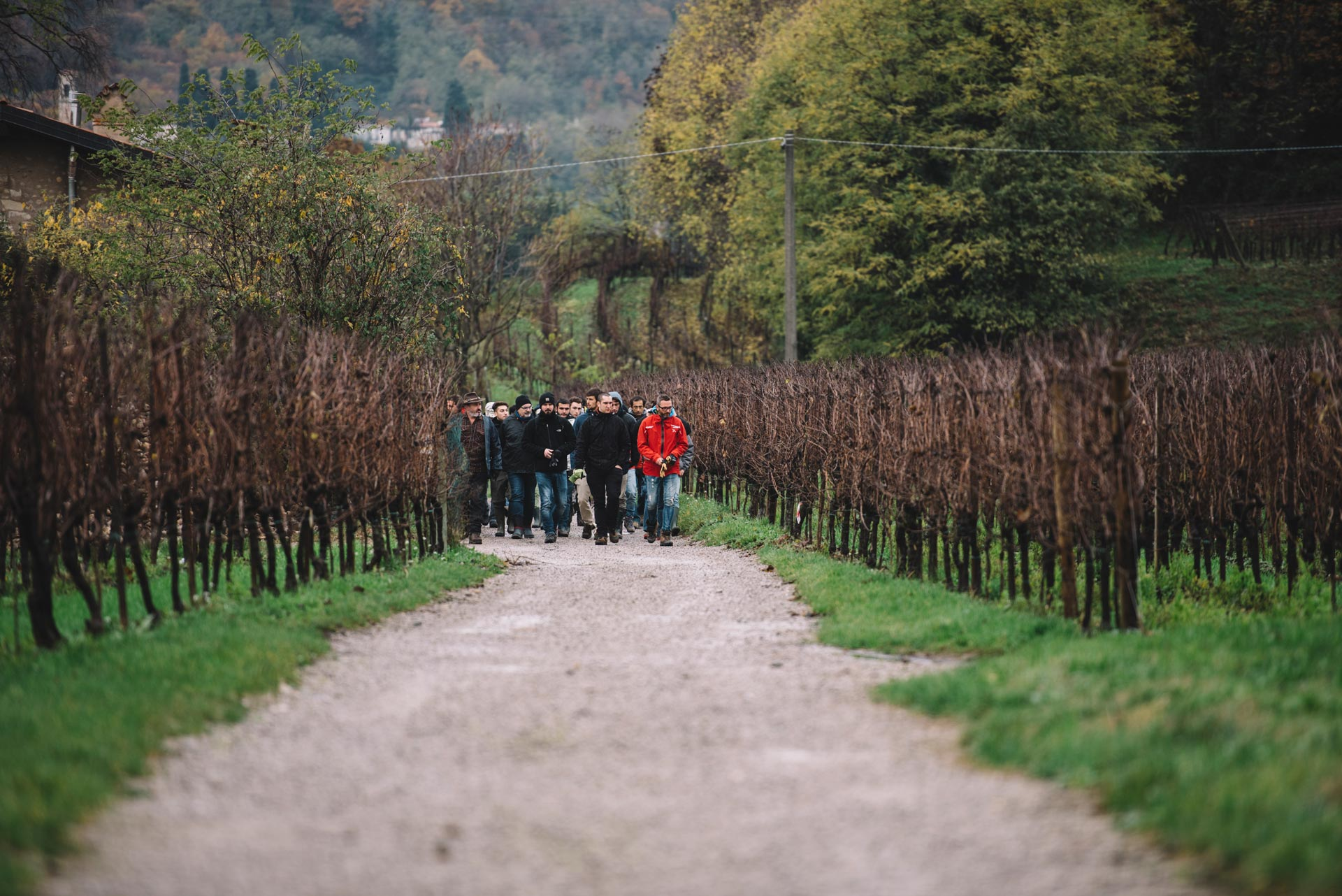 School 2016/17 | Bellavista | Franciacorta | Lombardia