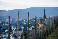 Zeltingen, Shmitt vneyard, Selbach Oster, Mosel, Germany